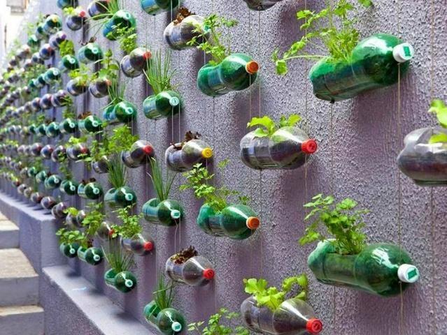 Грядки из пластиковых бутылок: как сделать своими руками + варианты оформления