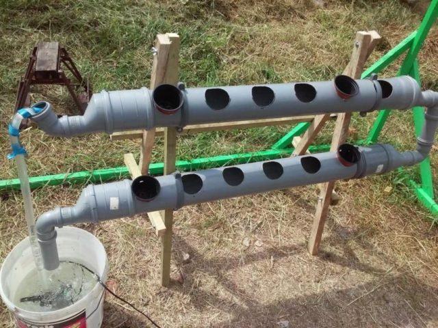 Грядка для клубники из канализационной трубы: простой метод создания своими руками
