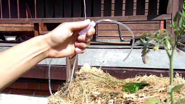 Вертикальная грядка для клубники своими руками: правила создания и секреты посадки