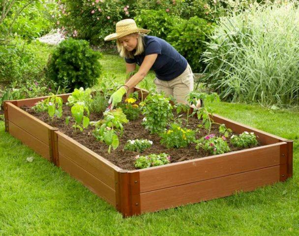 Пластиковые грядки: как сделать красивые садовые ограждения из обычной пластмассы