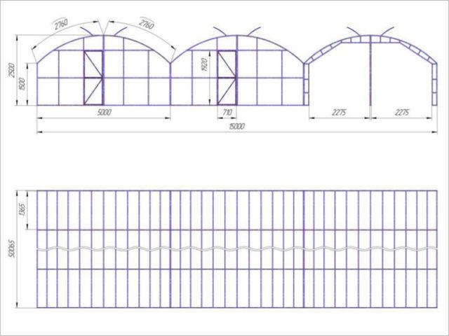 Проектирование промышленных теплиц: дизайн и постройка эффективного хозяйства