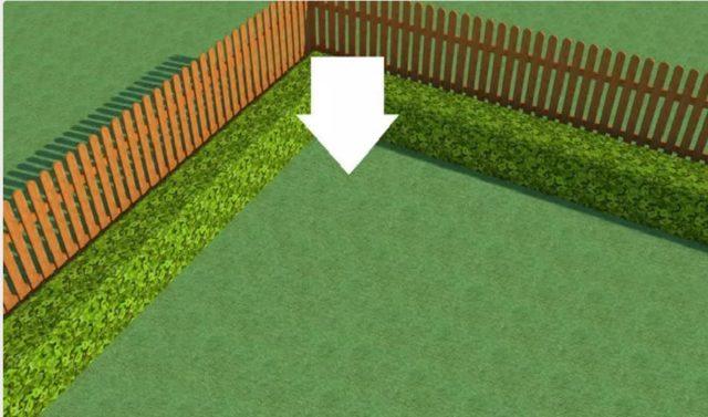 Треугольный цветник своими руками: как правильно оформить + схемы с фото
