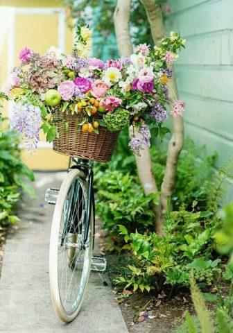 Цветник из старого велосипеда: необычные идеи оформления + вдохновляющие фото