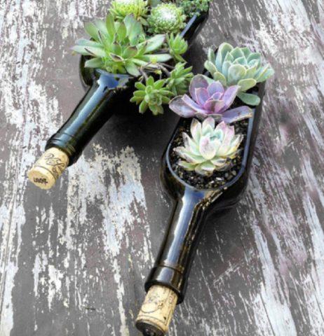 Клумбы из стеклянных бутылок: впечатляющие идеи + мастер-класс по оформлению