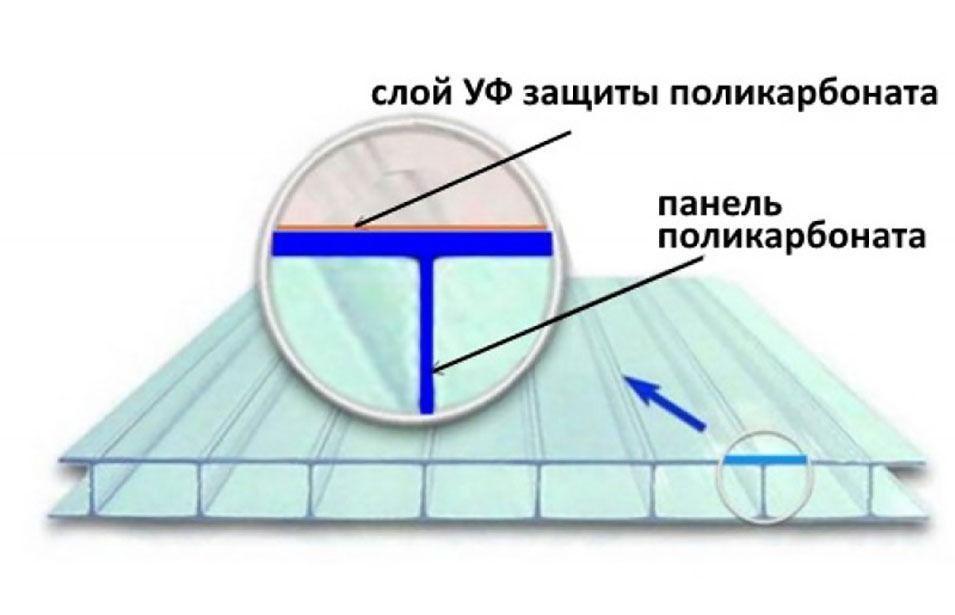 Выбор поликарбоната для теплицы на своём дачном участке