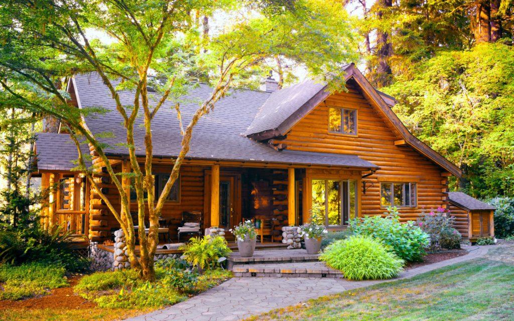 Из какого вида дерева лучше построить дом