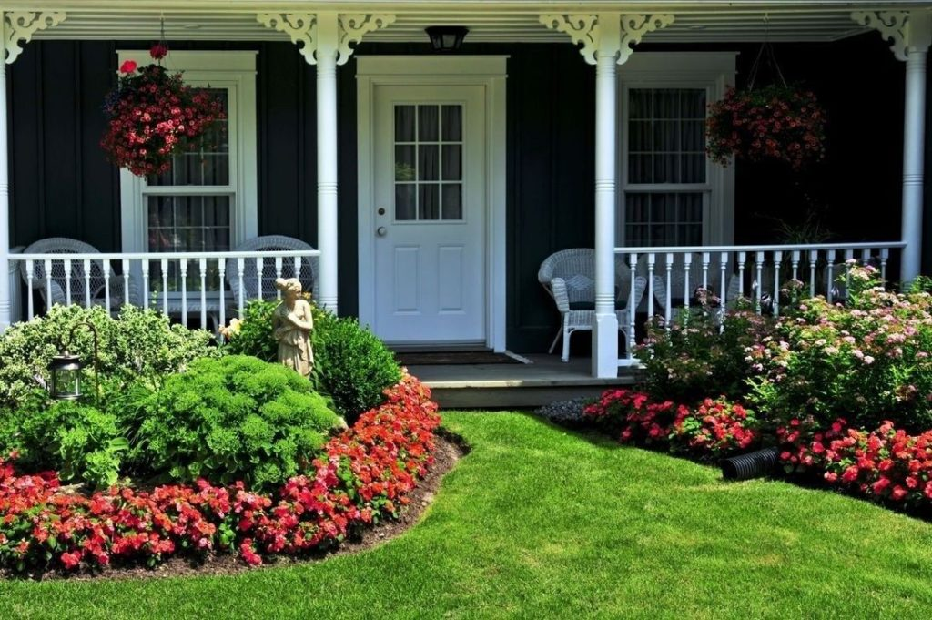 Какие цветы и кустарники можно посадить возле дома