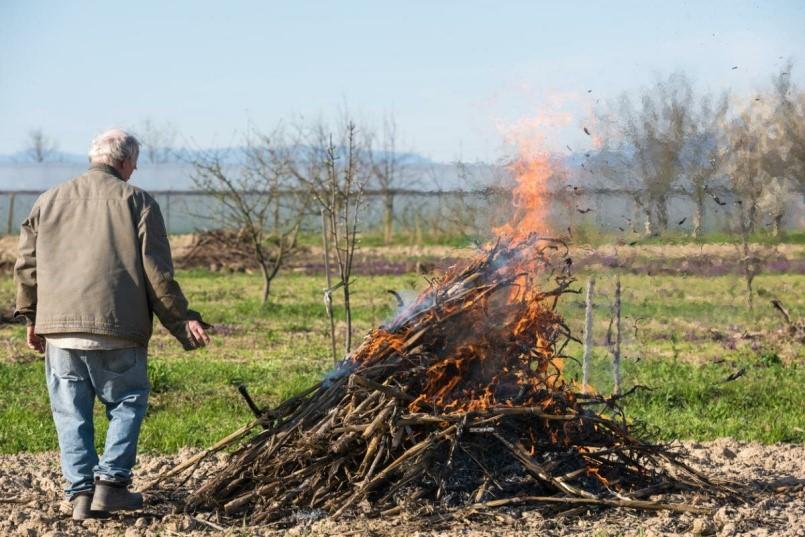 Можно ли сжигать мусор на своем дачном участке