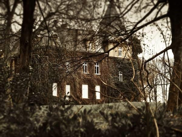 Какой недвижимостью владеет знаменитый артист Александр Серов