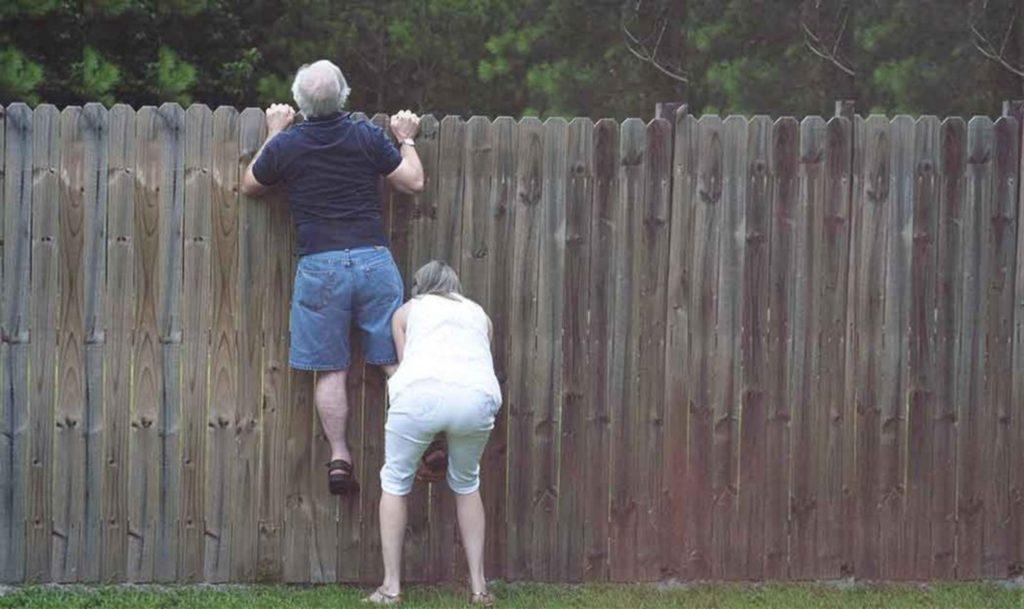 Как правильно поставить забор на даче, чтобы не входить в конфликт с соседями и с законом